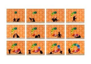 6robin-rhode.jpg