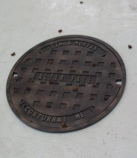 11four-thieves-vinegar-sydney-shen.jpg