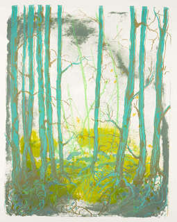 11katharina-albers-what-dreams-those-forests.jpg
