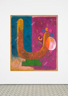 12david-renggli-suv-paintings.jpg