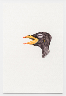 13colby-bird.jpg