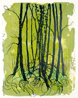 13katharina-albers-what-dreams-those-forests.jpg
