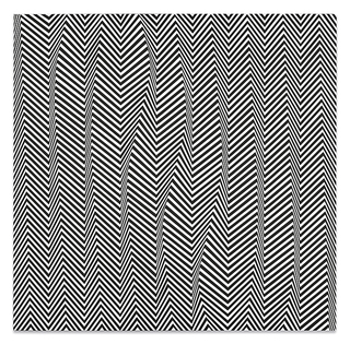 16Bridget_Riley.jpg