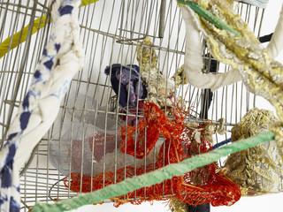 16sonia-gomes-marina-perez-simao.jpg