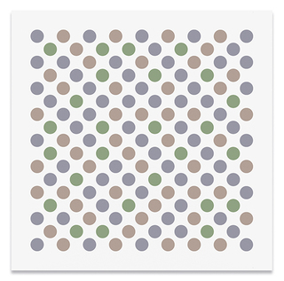 17Bridget_Riley.jpg