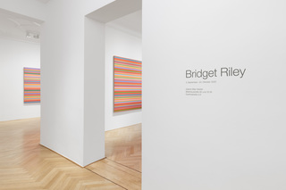 1bridget-riley-2020.jpg