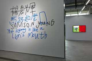 1samson-young.jpg