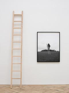 23acobs_ladder.jpg