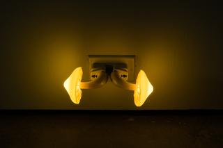 24FiveSculptures.jpg