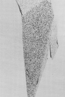 3arnaud-pierre-olivier.jpg