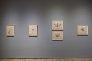 3eugene-von-bruenchenhein-drawings-1964-67.jpeg