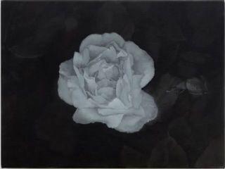 4don_brown__fleurs.jpg