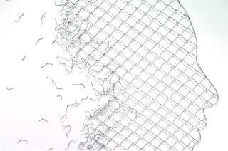 7cy-sot-fences-faces.jpg