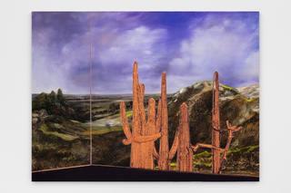 7whitney-bedford-reflections-on-the-anthropocene.jpg