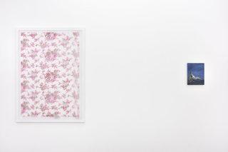 9les-fleurs-de-lete.jpg